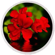 Red Geranium On Water Round Beach Towel