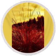 Round Beach Towel featuring the photograph Red Grass by Jennifer Lake