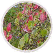 Red Green October Round Beach Towel