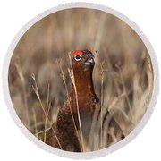 Red Grouse Calling Round Beach Towel