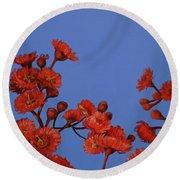 Red Gum Blossoms Round Beach Towel