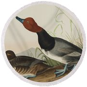 Red Headed Duck, 1836 Round Beach Towel
