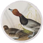 Red-headed Duck Round Beach Towel