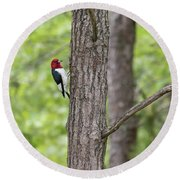 Red-headed Woodpecker 2017-1 Round Beach Towel by Thomas Young