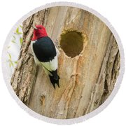 Round Beach Towel featuring the photograph Red-headed Woodpecker At Home by Ricky L Jones