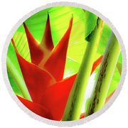 Red Heliconia Plant Round Beach Towel