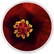 Red Hibiscus Round Beach Towel