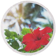 Round Beach Towel featuring the photograph Red Hibiscus by Cindy Garber Iverson