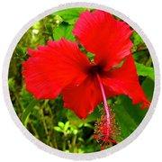 Red Hibiscus In Puna Round Beach Towel