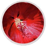 Red Hibiscus Round Beach Towel by Judy Johnson