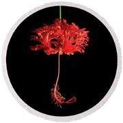 Red Hibiscus Schizopetalus On Black Round Beach Towel