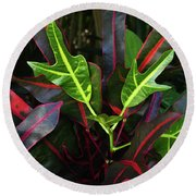 Red Hot And Green Round Beach Towel