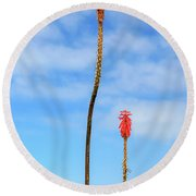 Round Beach Towel featuring the photograph Red Hot Pokers by James Eddy