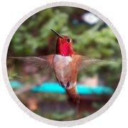 Red Hummingbird Round Beach Towel by Joseph Frank Baraba