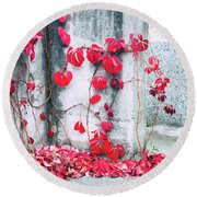 Round Beach Towel featuring the photograph Red Ivy Leaves by Silvia Ganora