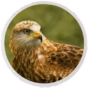 Round Beach Towel featuring the photograph Red Kite by Scott Carruthers
