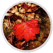 Round Beach Towel featuring the photograph Red Leaf by Meta Gatschenberger