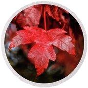 Red Leaf Round Beach Towel by Robert Bales