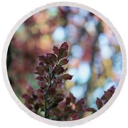 Red Leaves Abstract Round Beach Towel by Mike Reid