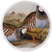 Red-legged Partridges Round Beach Towel by John Gould