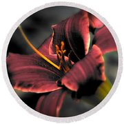Red Lilly2 Round Beach Towel