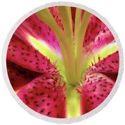 Red Lily Closeup Round Beach Towel