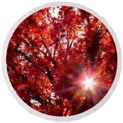 Red Maple Burst Round Beach Towel by Wendy McKennon