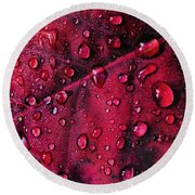 Red Morning Round Beach Towel