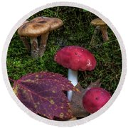 Red Mushrooms Round Beach Towel