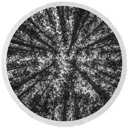 Red Pine Tree Tops In Black And White Round Beach Towel