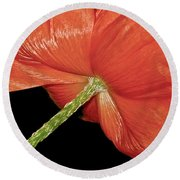 Red Poppy Flower On Black Background Round Beach Towel by Carol F Austin