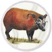 Red River Hog Round Beach Towel