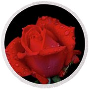 Round Beach Towel featuring the photograph Red Rose 013 by George Bostian