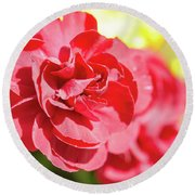 Red Rose II Round Beach Towel