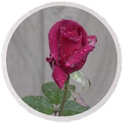 Red Rose In Rain Round Beach Towel