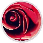 Red Rose Round Beach Towel by Joseph Skompski