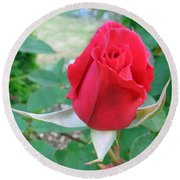 Red Rose On Verona Round Beach Towel