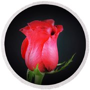 Red Rose Shows Love  Round Beach Towel