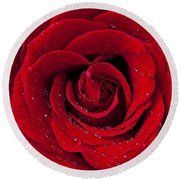 Red Rose With Dew Round Beach Towel