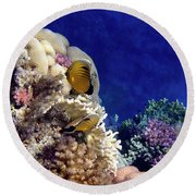 Red Sea Exotic World Round Beach Towel