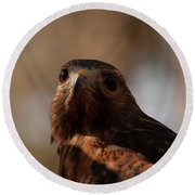 Round Beach Towel featuring the photograph Red Shouldered Hawk Close Up by Chris Flees