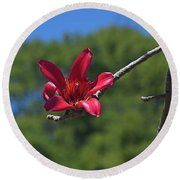 Red Silk Blossom Round Beach Towel