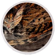 Red Spot Tabby Round Beach Towel by Nancy Kane Chapman