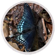 Round Beach Towel featuring the photograph Red Spotted Purple Admiral by Skip Willits