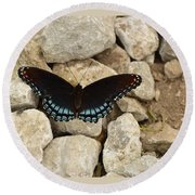 Red-spotted Purple Brush-foot Round Beach Towel