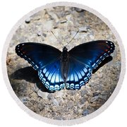Red-spotted Purple Butterfly Round Beach Towel by Kerri Farley