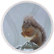 Red Squirrel In A Blizzard Round Beach Towel