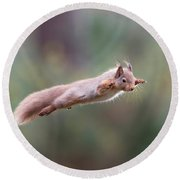 Red Squirrel Leaping Round Beach Towel