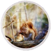 Red Squirrel With Pinecone Round Beach Towel