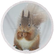 Red Squirrel With Snowflakes Round Beach Towel